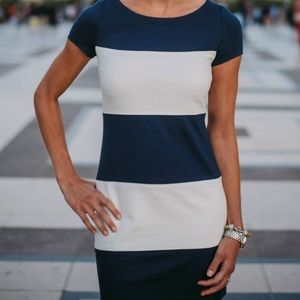 Banana Republic Navy & White colorblock Dress